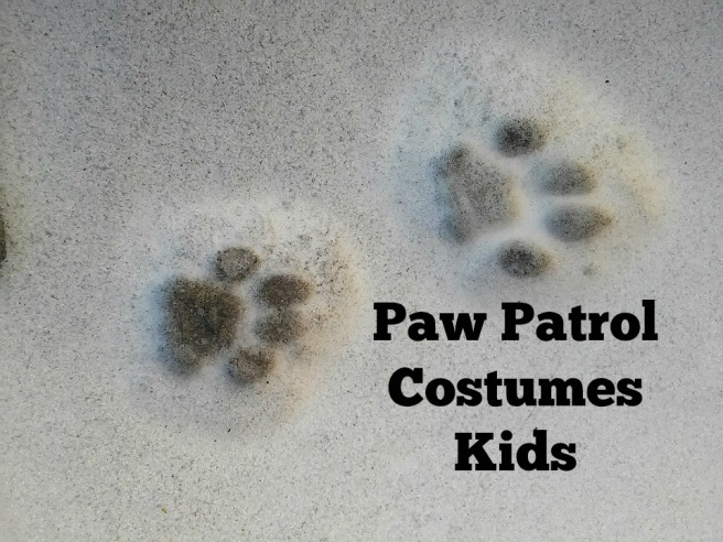 paw patrol costumes kids